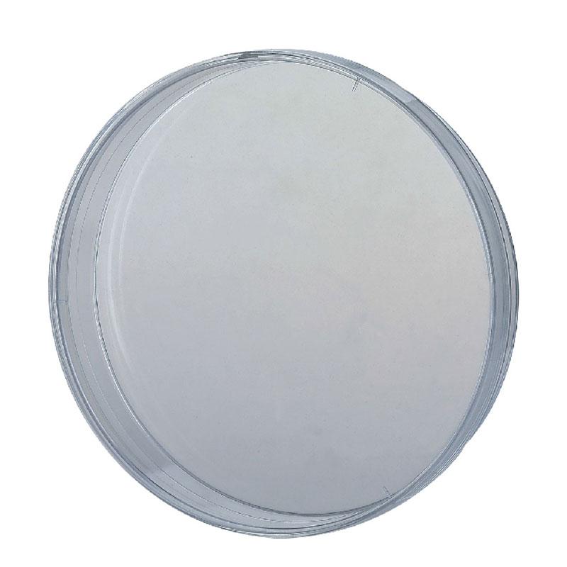 Culture Dish 059104 Mould
